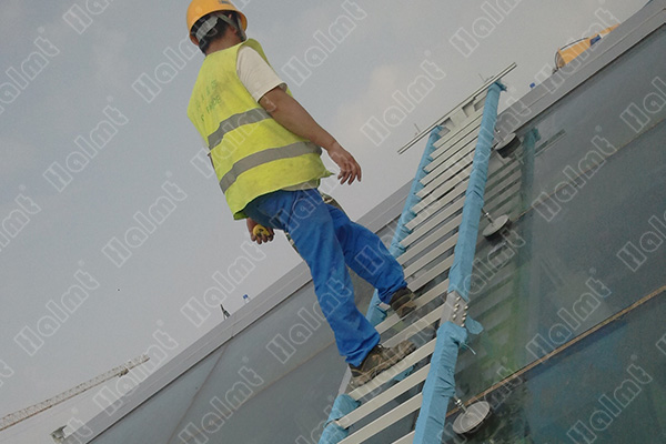 Roof-Access-Ladder.jpg