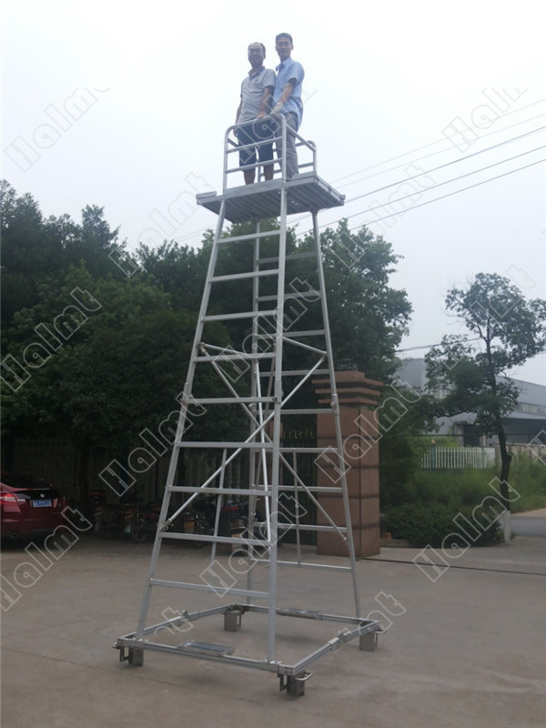 overhead line inspection ladder.jpg